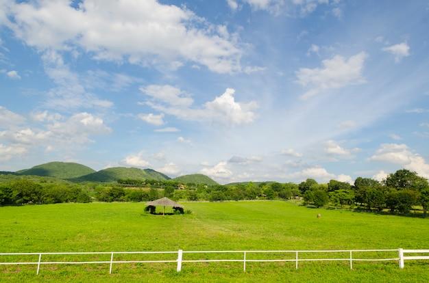 Clôture en béton blanc dans le champ de la ferme équestre Photo Premium