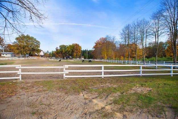 Clôture blanche en bois sur un champ vert. beau ciel bleu les chevaux paissent. Photo Premium