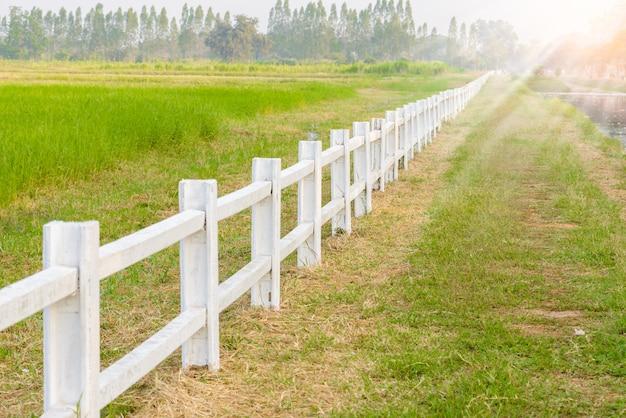 Clôture blanche dans la ferme Photo Premium