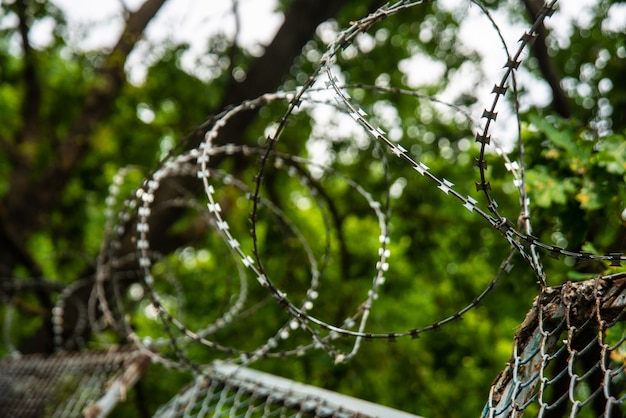 Clôture en fil de fer barbelé extérieure sur le ciel et les arbres Photo Premium