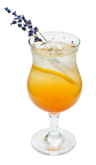 Cocktail orange en verre high ball Photo Premium