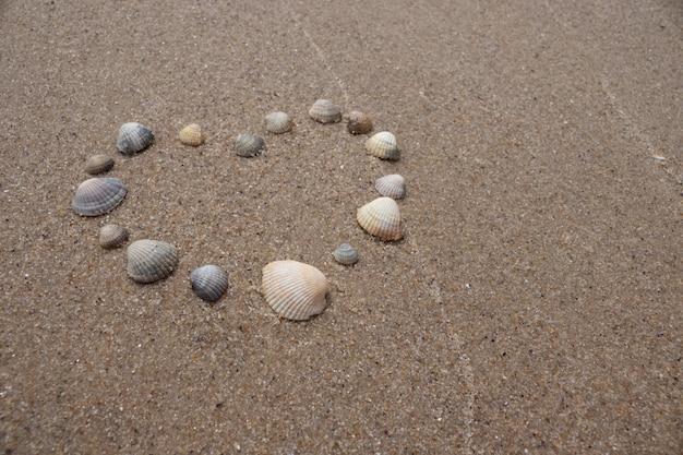 Coeur de coquillages sur le sable au bord de la mer. symbole de l'amour Photo Premium