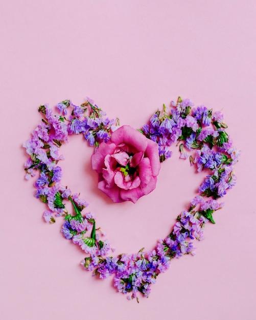 Coeur Fait Avec Fleur De Lavande Et Rose Sur Fond Rose Telecharger