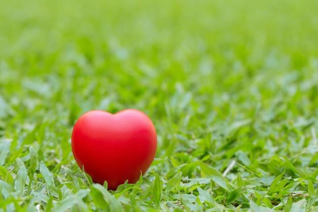 Coeur rouge placé sur l'herbe verte Photo Premium