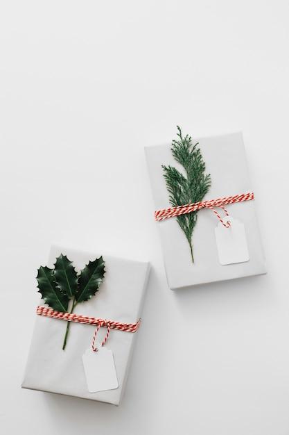 Coffrets cadeaux avec des plantes vertes sur table Photo gratuit