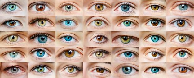Collage des yeux Photo Premium