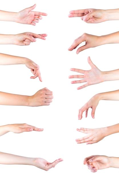 Collection de gestes de la main sur fond blanc Photo gratuit