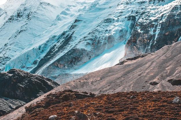 Coloré Dans La Forêt D'automne Et La Montagne De Neige à La Réserve Naturelle De Yading, Le Dernier Shangri La Photo Premium