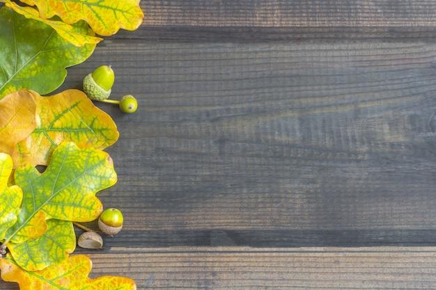 Composition D'automne. Cadre De Bordure De Feuilles D'automne Colorées Photo Premium