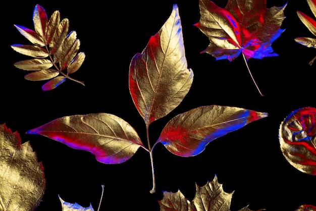 Composition d'automne de différentes feuilles d'or sur un fond noir Photo Premium