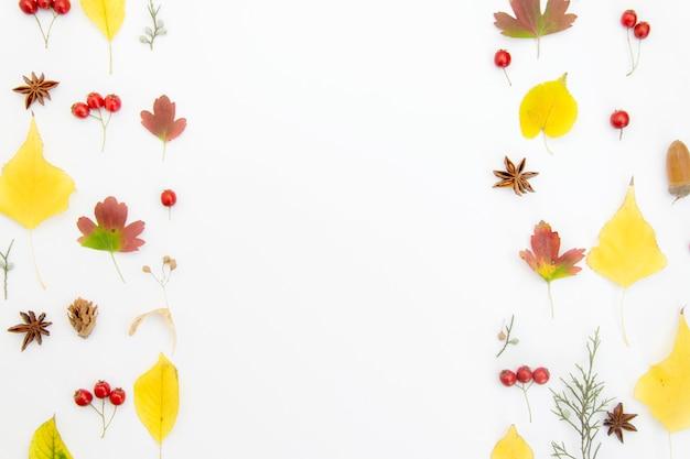 Composition D'automne Avec Des Feuilles Sur Blanc Photo Premium