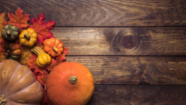 Composition de citrouilles mûres et feuilles d'automne Photo gratuit