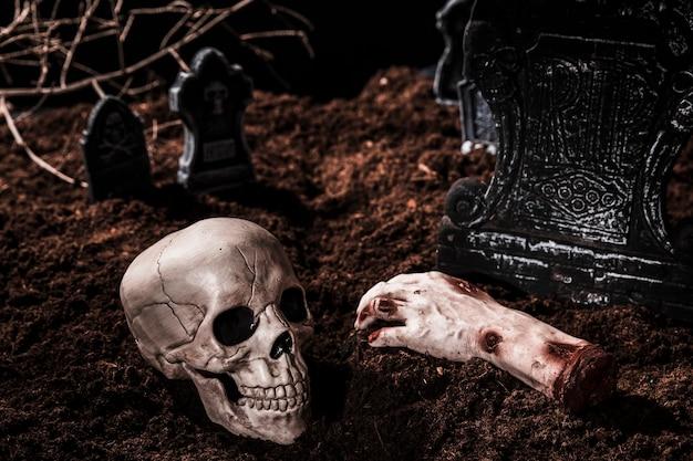 Composition avec le crâne et la main coupée Photo gratuit