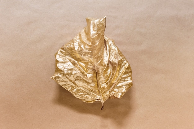 Composition Créative Avec Une Seule Feuille Teinte Avec Une Couleur Métallique Dorée Sur Une Surface En Papier Kraft Photo Premium