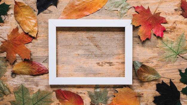 Composition de feuille d'automne avec cadre photo Photo gratuit