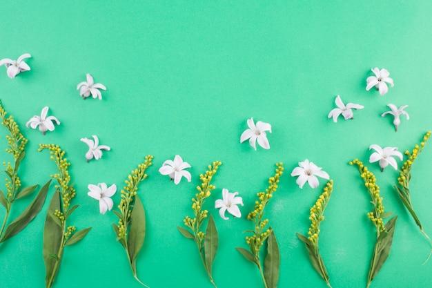 Composition de fleurs blanches près des tiges vertes Photo gratuit