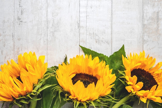 Composition De Fleurs De Tournesol Jaune Sur Un Fond En Bois Blanc. Photo Premium