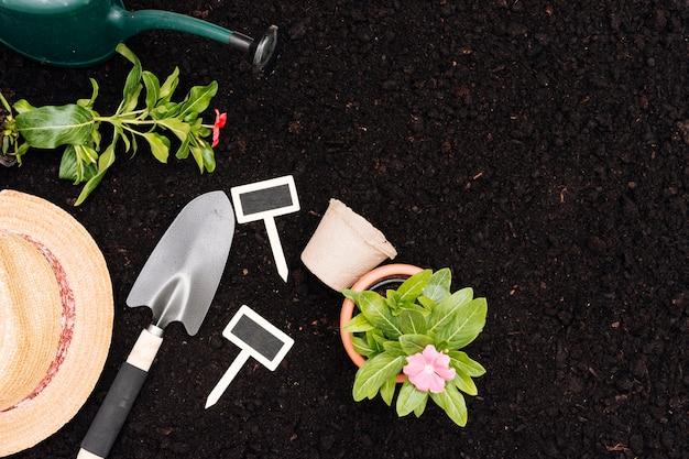 Composition De Jardinage Vue De Dessus Avec Espace De Copie Photo gratuit