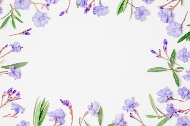 Composition de merveilleuses fleurs et plantes bleues Photo gratuit