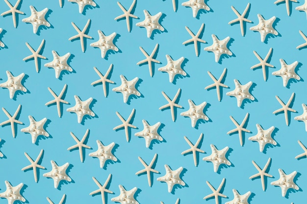 Composition De Motifs Faite D'étoiles De Mer Photo gratuit