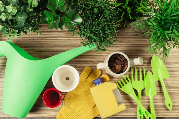 Composition des outils de jardin Photo Premium