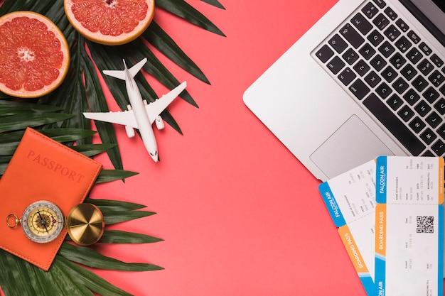 Composition sur petit avion passeport boussole billets ordinateur portable feuilles de pamplemousse et plantes Photo gratuit