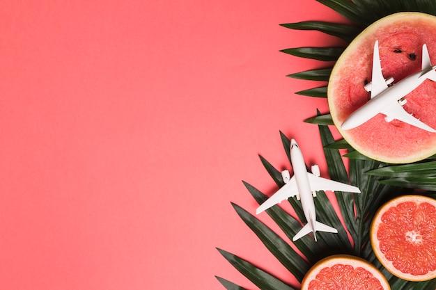 Composition De Petits Avions Plante Des Feuilles De Pamplemousse Et De Melon D'eau Photo gratuit