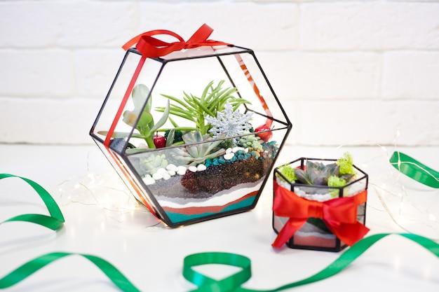Composition de plantes succulentes, pierre, sable et verre Photo Premium
