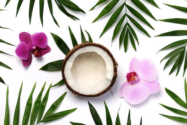Composition Tropicale Et Coco Photo Premium