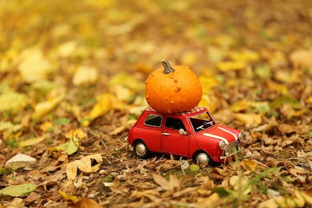 Concept d'automne. livraison de potiron. automne. Photo Premium