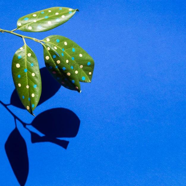 Concept de belles feuilles peintes avec des ombres et un espace de copie Photo gratuit