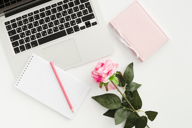 Concept de bureau vue de dessus avec une rose Photo gratuit