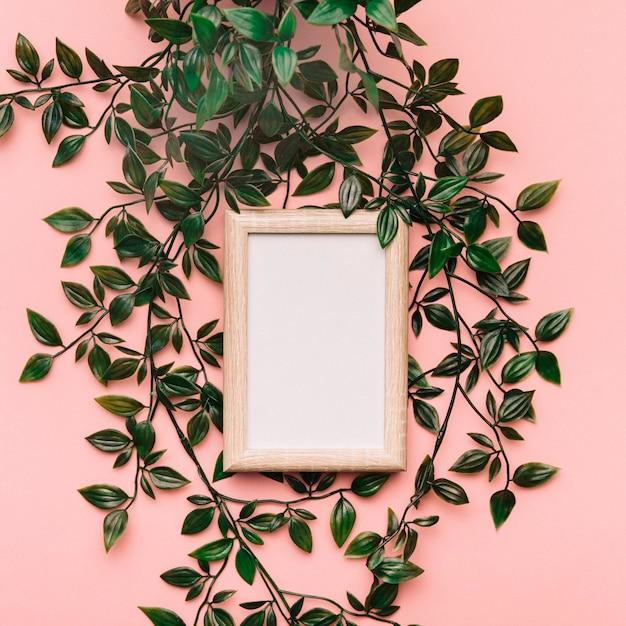 Concept De Cadre Botanique Photo gratuit