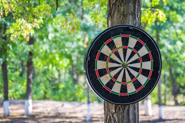Concept commercial, flèches de fléchettes au centre de la cible Photo Premium