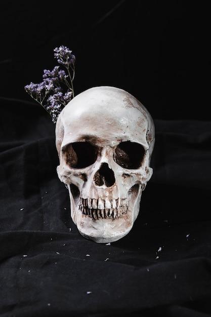 Concept avec crâne et fleurs sèches Photo gratuit