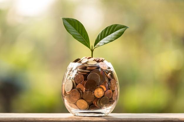 Concept de croissance d'entreprise Photo Premium
