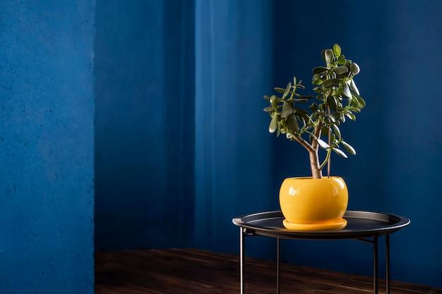 Concept De Design D'intérieur à La Maison Photo Premium