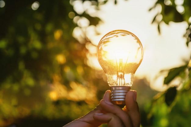 Concept énergie de l'énergie solaire dans la nature Photo Premium