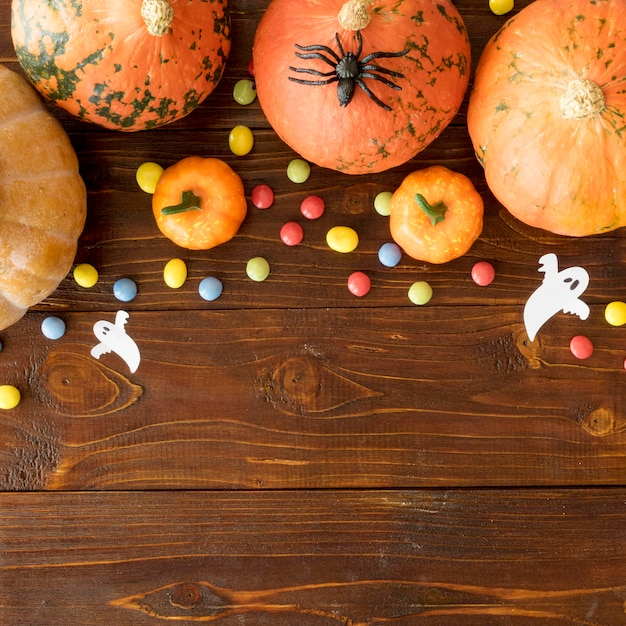 Concept D'halloween Mignon Avec Espace Copie Photo gratuit
