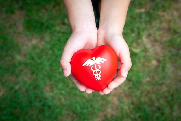 Concept d'icône médical au cœur des mains de la famille Photo Premium
