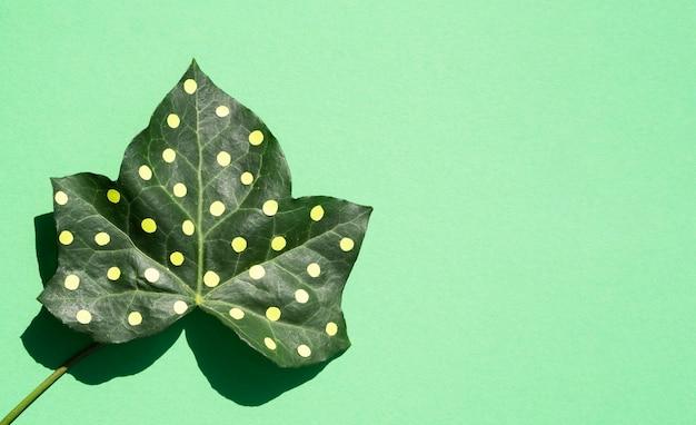 Concept de nature morte nature morte dotty leaf sur fond d'espace de copie Photo gratuit