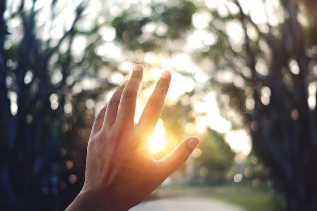 Concept de vie. la main de l'homme s'élevant dans le ciel au coucher du soleil Photo Premium