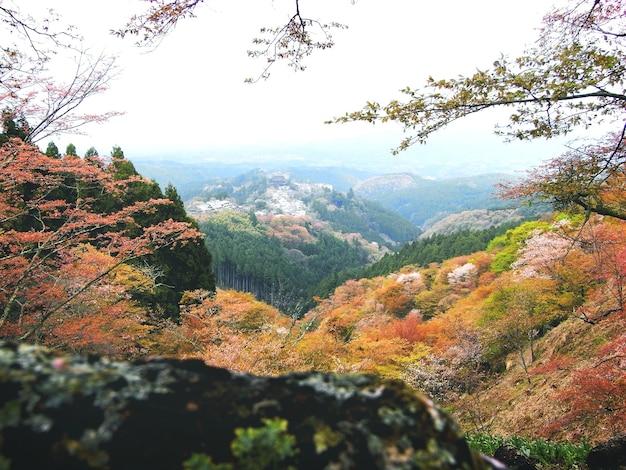 Concept de voyage tranquille de range mountain environmental journey Photo gratuit