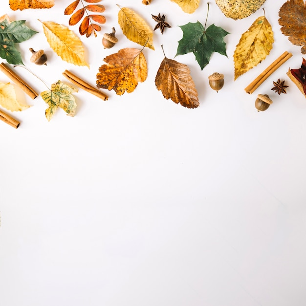 Condiments et feuilles en arrangement Photo gratuit
