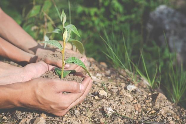 Conservation de l'environnement dans le jardin pour les enfants. Photo gratuit