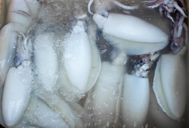 Conservez les fruits frais sur la glace Photo Premium