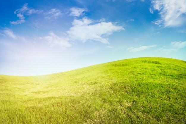 Contexte de la prairie de courbe sur le ciel bleu avec la lumière du soleil. Photo gratuit