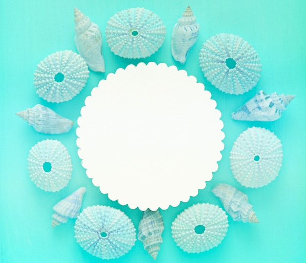 Coquillages Bleus Et Maisons D'oursins Sur Turquoise Photo Premium