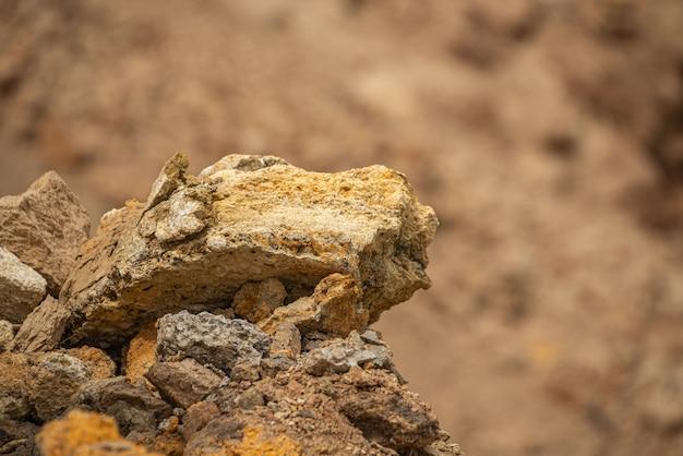 Coquille des rochers sur la côte d'odessa en ukraine Photo Premium