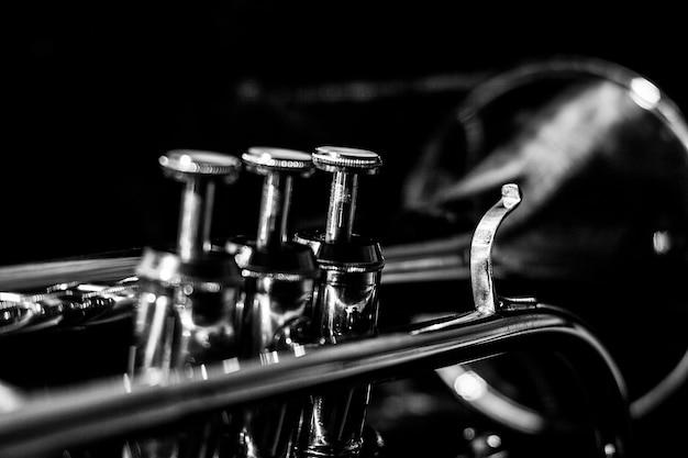 Cornet musical classique de noir et blanc. Photo Premium